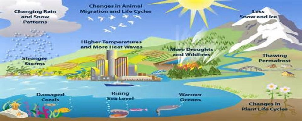 thesis on climate change in india Forests and climate change working paper 10 forest management and climate change: a literature review food and agriculture organization of the united nations.