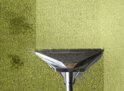upholstery and carpet cleaning