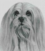 Cross Stitch Chart of a Lhasa Apso original artwork by Nick Clark
