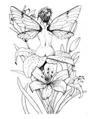 free coloring page fairy dragonfly tiger lily