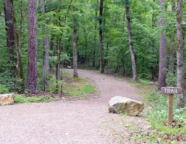 REMAX Real Estate in Hot Springs Village - Nature Trails