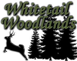 Whitetail Woodlands