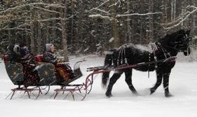 Sleigh Rides, Carriage Rides, Hay Wagon Rides, Horseback Riding, Riding Trails West Michigan