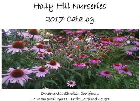 2017 Holly Hill Nurseries Catalog
