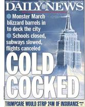 Lynda Cheldelin Fell in New York Daily News