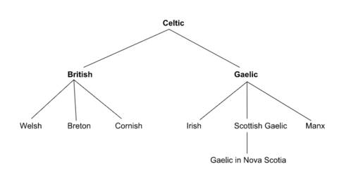 celtic languages essay Excerpt from a grammar of the iberno-celtic, or irish language: to which is prefixed an essay on the celtic language, shewing the importance of the iberno-celtic or irish dialect, to students in history, antiquity, and the greek and roman classics.