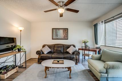 Furnished Rental in Mesa AZ