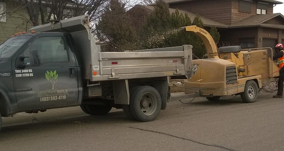 tree pruning using chipper and dump truck