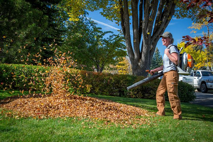FALL YARD CLEAN UP SERVICE