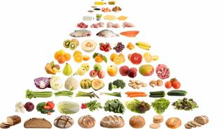 Nutrition Guide & Diet Groups