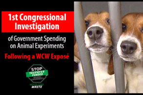 The ist Congressional Investigation of Government Spending on Animal Experiments!