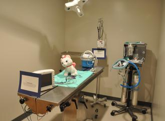 Main surgical suite of Cincinnati Hills Animal Clinic Montgomery Road location
