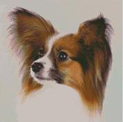 Cross Stitch Chart of a Papillon