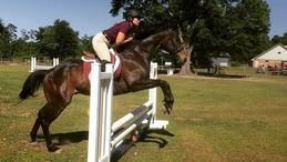 Horse Lessons Training Boarding Fort Walton Beach Florida