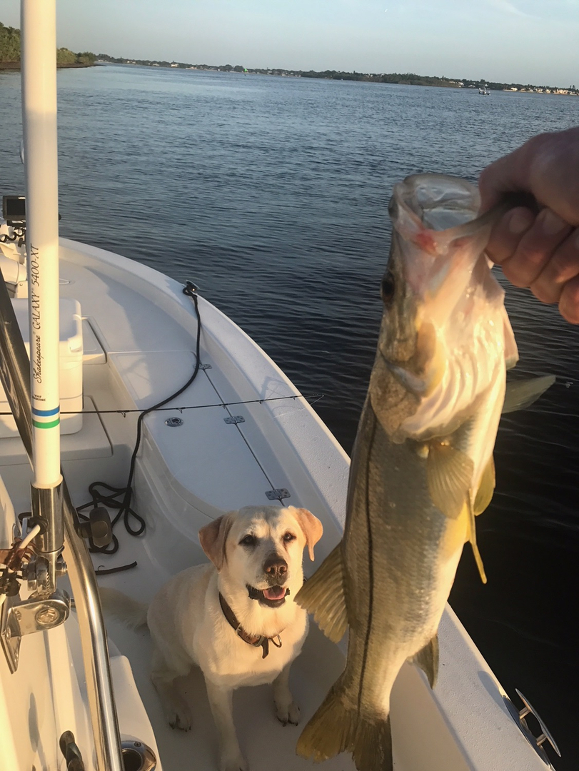Fishing Charters - Long Time Com'n Charters and Sportfishing