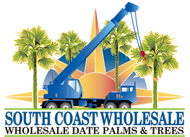 South Coast Wholesale, Wholesale date palms and trees California, Florida, Texas, Las Vegas, Arizona, Medjool Date Palms, datepalm, medjool, zahidi