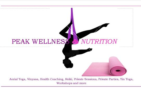 peak wellness and nutrition aerial yoga vinyasa yoga haddonfield nj