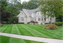 beautifully manicured lawn by Presentato Landscape