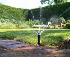 Expert irrigation installation with precise watering in oakville