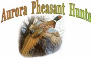 The best pheasant hunting booking service!