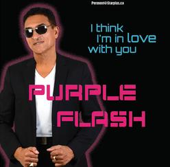 purple flash artist