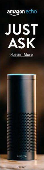 Amazon Echo Just Ask Echo
