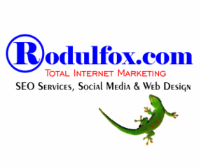 SEO and Social Media Marketing Agency Full Services in Charlotte 300 x 250
