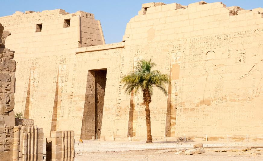 the society for the study of ancient egypt