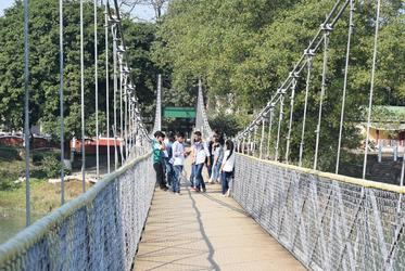 Hanging bridge at Pobitora