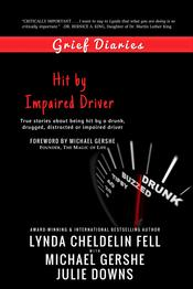 Grief Diaries Hit by Impaired Driver book
