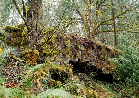 Ghost Town Of Melmont Pierce County Washington