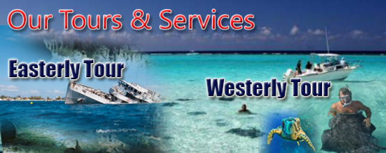 Cayman Connect Tours and Services