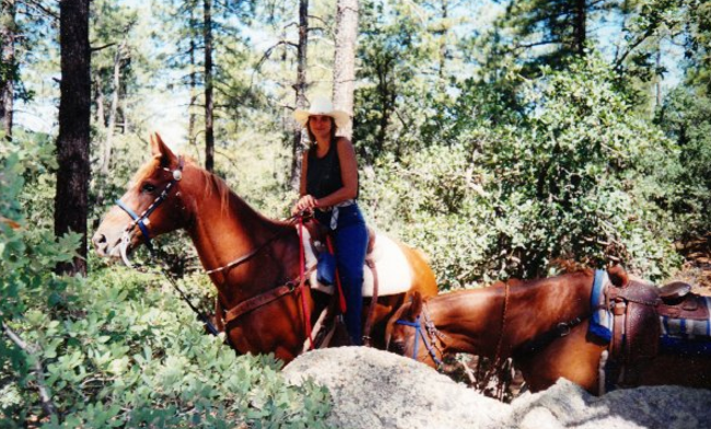Horse Boarding And Leasing, Dogs For Adoption - Vj Ranch