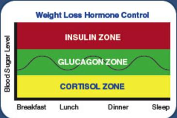 Weight loss Hormone control and Blood sugar level; insulin zone, Glucagon zone, Cortisol zone