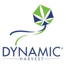Dynamic Harvest - Cannabis Purveyor