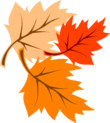 Click for Fall Festival Info