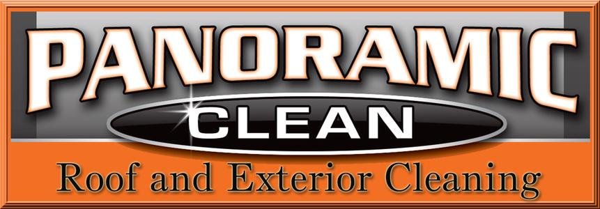Panoramic Clean Logo