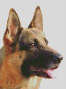 Cross Stitch Chart of a GErman Shepherd Dog looking to his left