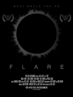 Link to Flare Website