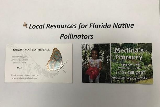 "A wall display showing ""Local Resources for Florida Native Pollinators."""