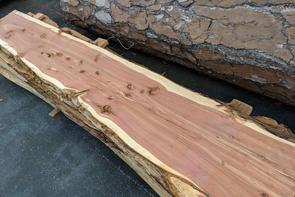 Unfinished Raw Wood Slabs