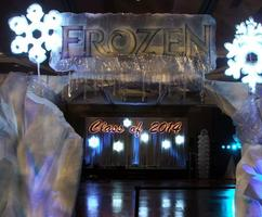 Frozen Winter Wonderland Theme Decor - Frozen Entrance Arch, lighted snowflakes, twinkle lights.