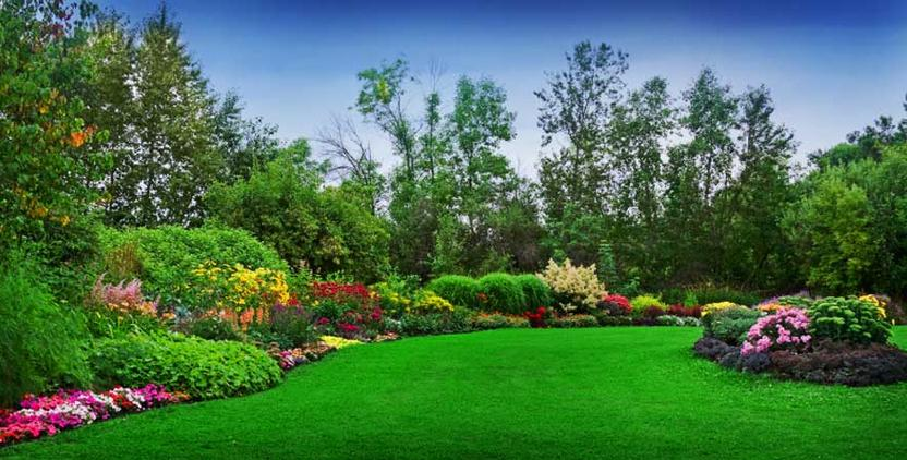 - Commercial Landscaping Services