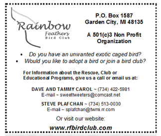 Rainbow Feathers Club & Rescue