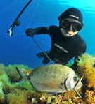spearfishing charter, spearfishing outer banks, spearfishing OBX