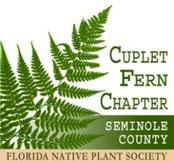 Cuplet Fern Chapter