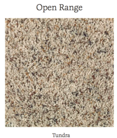 mohawk carpet in stock carpet in dallas tx, carpet in stock in dfw, mohawk carpet stores in dallas, clearance carpet in dfw, clearance carpet in dallas