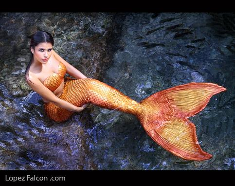 mermaid quince photography video miami photo shoot