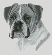 Cross Stitch Chart of a Boxer Dog original artwork by Nick Clark