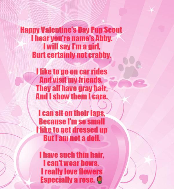 Pup Scouts Secret Valentines